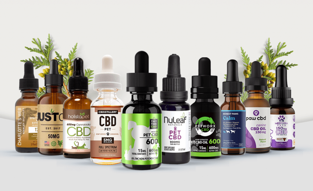Incredible Health Benefits And Uses of Hemp Oil To Your Pet.